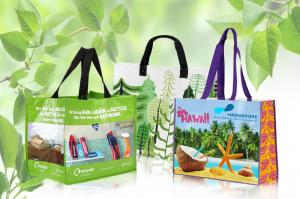 Túi siêu thị xuất khẩu HaiNam .IME